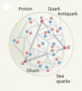 proton-nature-fevereiro-2021
